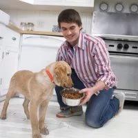 Здоровье вашей собаки зависит от правильного питания